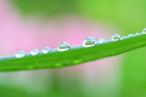 水分摂取と自律神経のバランスはむくみ、口臭や不妊の原因にもなる