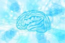 「噛む力」de「正しく働く脳」を取り戻す!口臭について。
