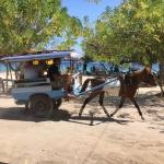 インドネシア ロンボク島への旅④