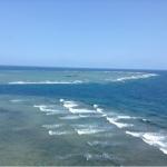 沖縄へ来て。