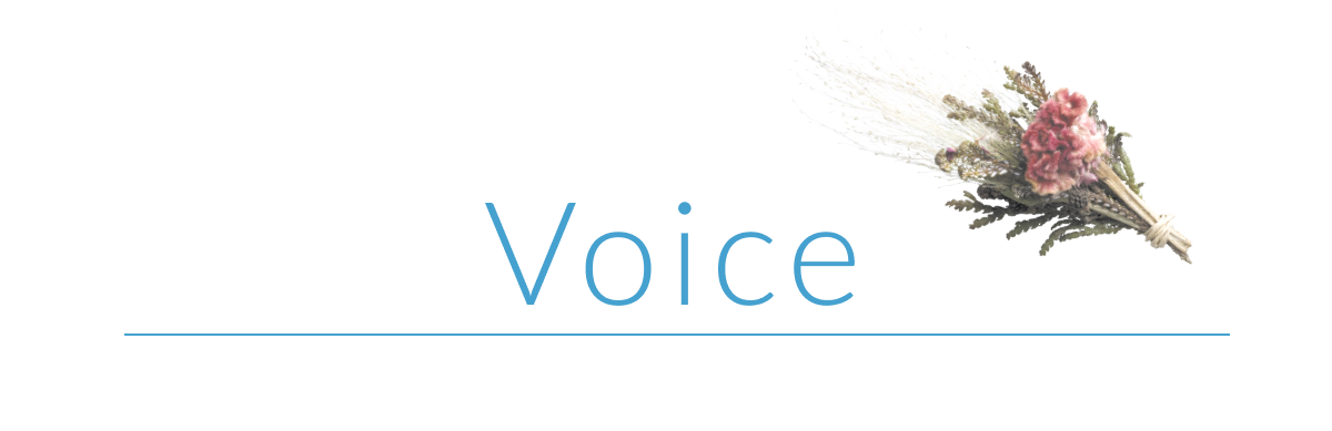 Voiceお客様の声